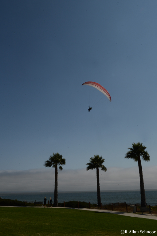 Paragliders over Pismo Beach, California
